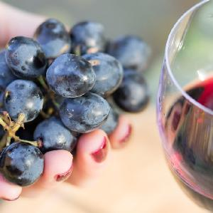 Wino z polskich winogron - jak zrobić domowe wino winogronowe